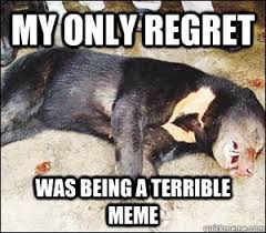 Confession Bear Meme - dead bear meme bear best of the funny meme
