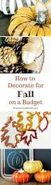 how to decorate for fall on a budget