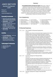 business development cv examples and template