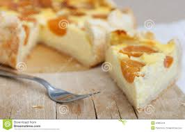 Cottage Cheese Cheese Cake by Cottage Cheese Cake With Apricot Stock Photo Image 46865244