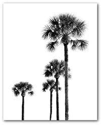 palm trees black and white print tropical palm trees