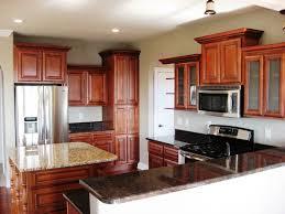 100 mahogany kitchen cabinet kitchen cabinet green