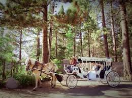 lake tahoe wedding packages top 5 places to propose in tahoe tahoe wedding tahoe