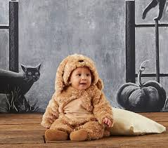 6 12 Month Halloween Costumes Baby Dog Costume Pottery Barn Kids