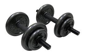 Jr Weight Bench Set 11 Best Adjustable Dumbbells Of 2017 Pythagorean Health