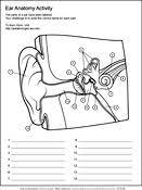 Human Anatomy Worksheet The 25 Best Human Ear Diagram Ideas On Pinterest Human Ear Ear