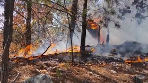 North Bay Fire Ban Status by Burn Ban Expanded Is Your County On The List Wfmynews2 Com