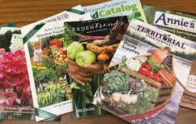 7 things you need to know before buying seeds this year