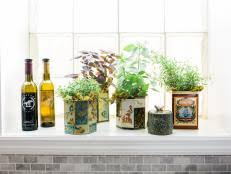 Indoor Herbal Garden 13 Easy Herbs To Grow Indoors Hgtv