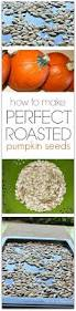 Toasting Pumpkin Seeds Cinnamon Sugar by Pepitas How To Make Perfect Roasted Pumpkin Seeds Snacks Und