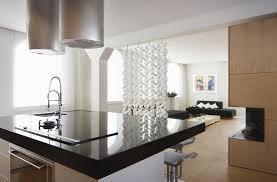Kitchen Living Room Divider Ideas Home Design Bedroom Divider Cabinet Designs For Living Room