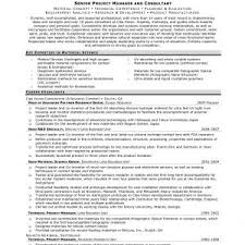 It Program Manager Resume Program Manager Resume Simple Writing Sample Summary Template For