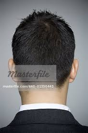 rearview haircut photo gallery rear view of a young man s head stock photo masterfile