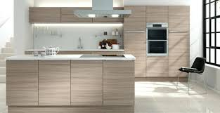 Finished Kitchen Cabinets Gloss Finish Kitchen Cabinets Door Style Cabinet Glossy Best