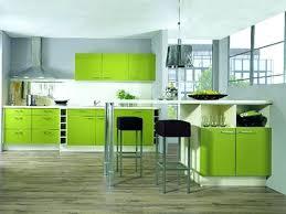 lime green kitchen appliances lime green kitchen medium size of modern kitchen color kitchen