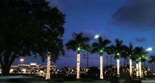holiday light displays in sarasota sarasota real estate news