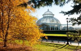 Ny Botanical Garden Membership by Curbed Gift Guide 15 Perfect New York City Themed Presents