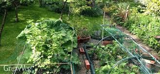 Best Garden Layout Veg Garden Best Vegetable Garden Layouts Ideas On Garden Planting