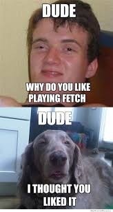 10 Guy Memes - 10 guy meets 10 dog weknowmemes