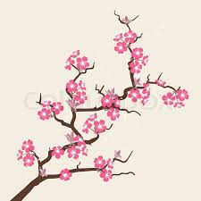 cherry blossom flowers card with stylized cherry blossom flowers stock vector colourbox