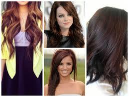 hightlight ideas for brown hair hair world magazine
