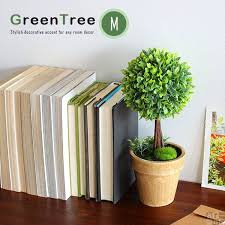Plant For Bedroom Plants For Bedroom 12 Plants For Your Bedroom To Help You