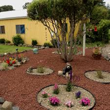 Flower Bed Ideas For Backyard My New Landscaped Yard With Lava Rocks And Small Flower Beds
