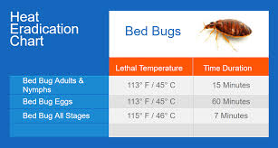 Bed Bug Exterminator Detroit Bed Bugs Thermapure