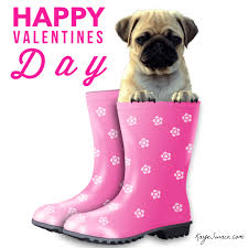 valentines day ideas for at home and out and about roseville