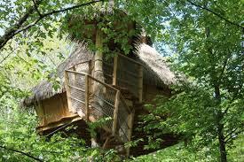 chambre d hote cabane dans les arbres cabane dans les arbres chapelle rablais la seine et marne