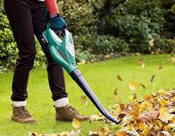 leaf blower black friday 71 best leaf blowers leaf vacuum mulcher images on pinterest