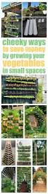 vertical vegetable garden ideas vertical vegetable gardens grow