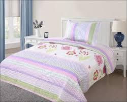 Light Pink Comforter Queen Bedroom Magnificent Pink Comforter Twin Pink Comforter Set Full