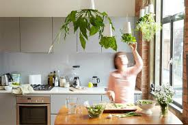 kitchen decorating ideas how to decorate your kitchen with herbs 40 ideas decoholic