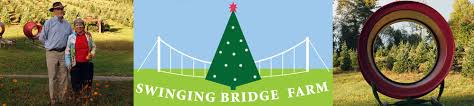 swinging bridge christmas tree farm choose and cut boone north
