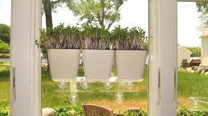 Fiber Soil by Self Watering Planter 5