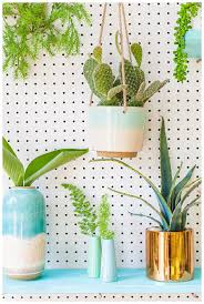 diy living wall with devine color by valspar u2014 cake u0026 confetti