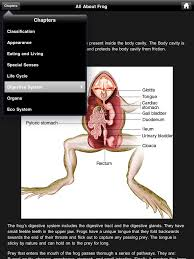 frog dissection review educational app store