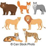 cheetah tiger and wolf clip vector search drawings and