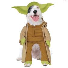 pet costumes wars yoda pet costume