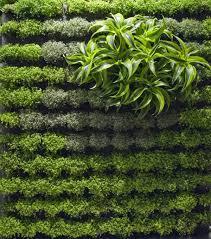 Screening Fence Or Garden Wall  Ideas For Garden Design - Wall garden design