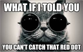 Blue Pill Red Pill Meme - morpheus cat welcome to the litter box of the real