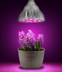Led Blue Light Bulb by Aliexpress Com Buy Led Grow Light Par38 10 Red 2 Blue Indoor