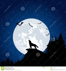 wolf and moon stock vector illustration of illustration 33347054