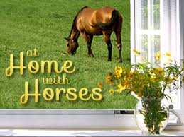 Are Horses Color Blind How Much Is A Horse Worth At Home With Horses