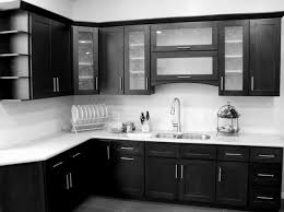 Mahogany Kitchen Cabinet Doors Glass Door Kitchen Cabinets Home