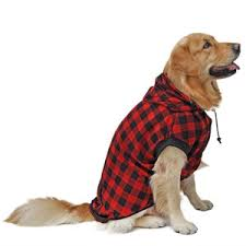 pet sweaters 10 best sweaters for winter warmth 2018 the clinic
