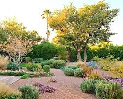 Backyard Desert Landscaping Ideas Desert Landscaping Ideas Backyard Desert Landscape Designs Lovable