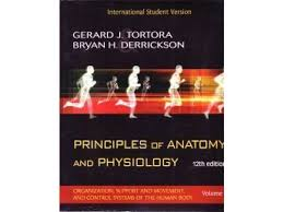 Anatomy And Physiology Pdf Books Principles Of Anatomy And Physiology 12th Ed Set Acumedic Shop