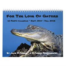 16 month alligator calendar photography gifts diy custom unique